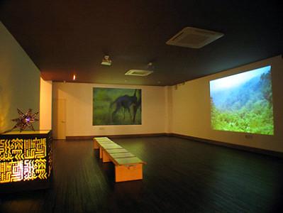제주 아프리카박물관