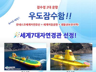 제주 우도잠수함+승마체험(기본코스)